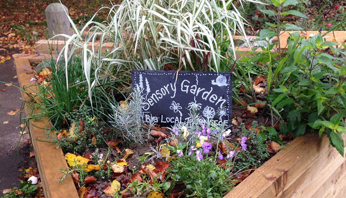 sensory garden thurnscoe park featured