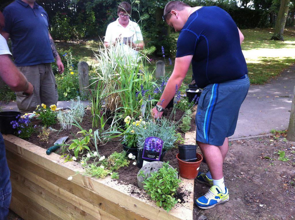 sensory-garden-thurnscoe-park2