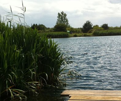 thurnscoe-reservoir-woodland-trust-funding