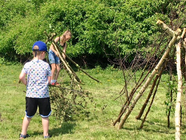 Dinosaur Day Thurnscoe, Den Building