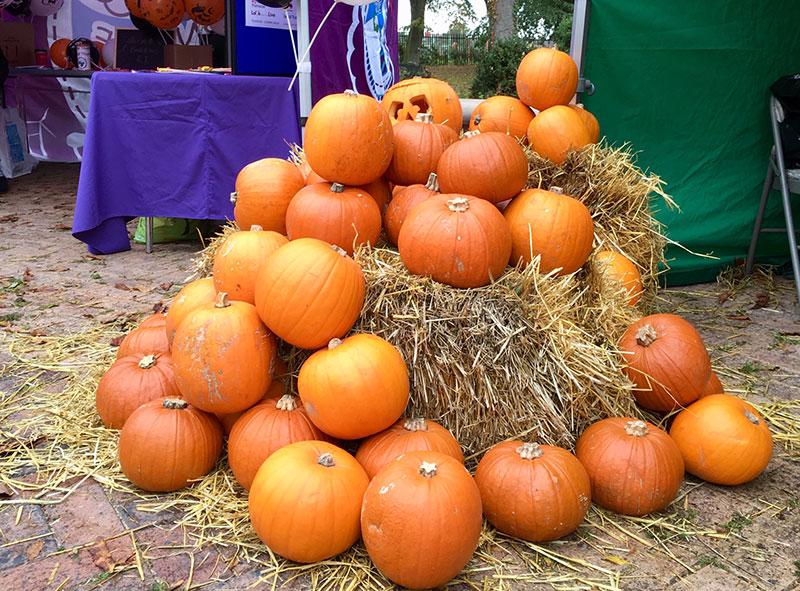 Thurnscoe Halloween Spooktacular Pumpkins